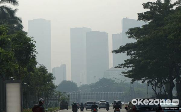 https: img.okezone.com content 2019 07 29 338 2085027 walhi-tuding-pemprov-dki-lamban-tangani-polusi-udara-d6Vdw84d9v.jpg
