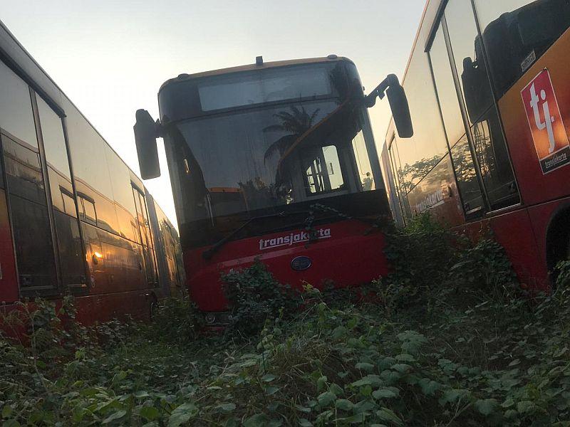 https: img.okezone.com content 2019 07 30 338 2085364 bus-bus-transjakarta-terbengkalai-di-ciputat-catnya-sudah-memudar-8fcWZcUcdn.jpg