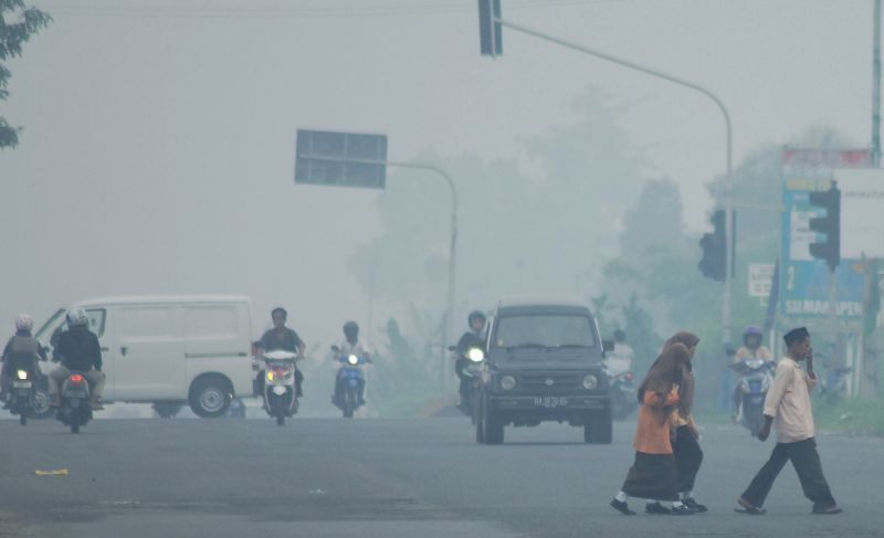 https: img.okezone.com content 2019 07 31 340 2085760 pekanbaru-berselimut-asap-jarak-pandang-terbatas-JX1sP6bvel.jpg