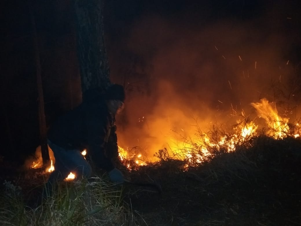 https: img.okezone.com content 2019 08 01 519 2086588 bpbd-jatim-siapkan-skema-pemadaman-api-di-gunung-arjuno-via-udara-cdOScbGzrw.jpg