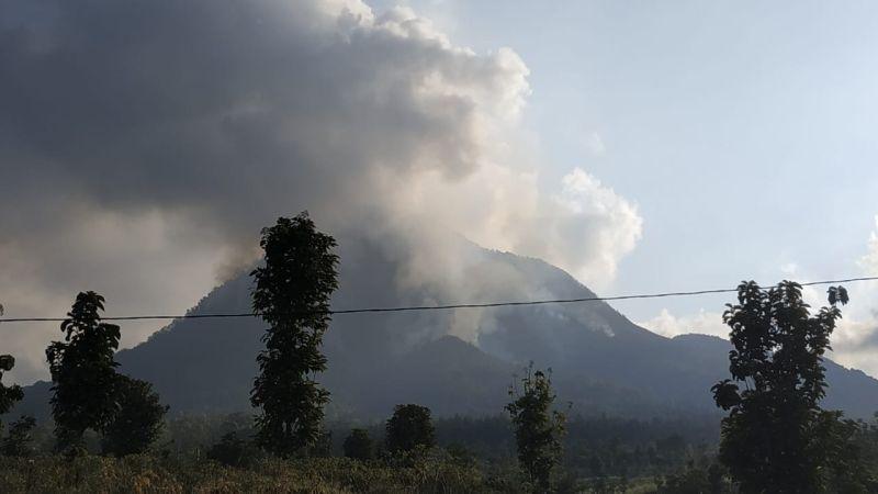 https: img.okezone.com content 2019 08 03 519 2087149 23-kasus-kebakaran-hutan-di-jatim-mayoritas-karena-ulah-manusia-eXWqodp6ci.jpg