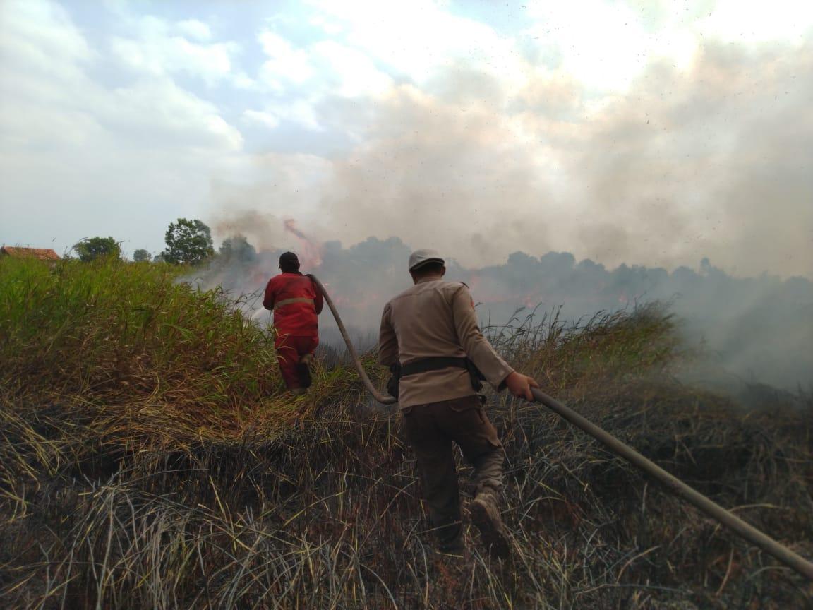 https: img.okezone.com content 2019 08 06 610 2088637 dua-hari-api-tak-padam-kebakaran-lahan-di-ogan-ilir-terus-meluas-jNVcWdzoZe.jpg