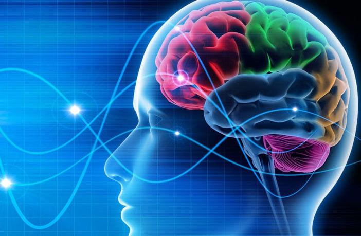 3 Fakta Ilmiah Otak Manusia : Okezone techno
