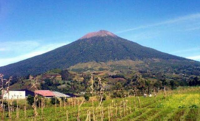 Darurat Kebakaran Dicabut Pendakian Ke Gunung Arjuno Sepi Jelang Hut Ri Okezone News