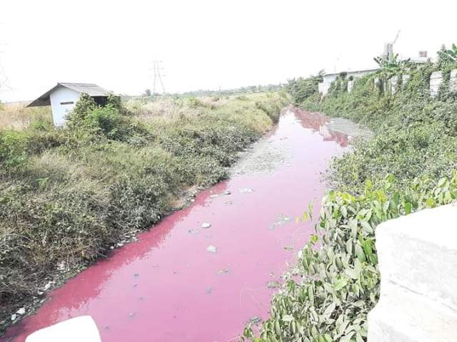 https: img.okezone.com content 2019 08 28 340 2097892 air-sungai-di-serang-tiba-tiba-berubah-warna-jadi-merah-AhhadrFTH2.jpg