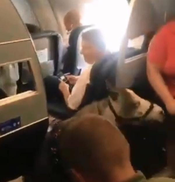 https: img.okezone.com content 2019 09 03 18 2100227 seekor-kuda-ikut-terbang-bersama-penumpang-di-pesawat-american-airlines-wqXd0wsEes.jpg