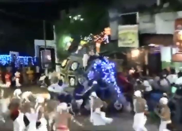 https: img.okezone.com content 2019 09 09 18 2102510 gajah-mengamuk-di-festival-keagamaan-sri-lanka-lukai-17-orang-FD0YpVi5Cw.jpg