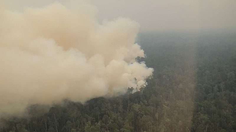 https: img.okezone.com content 2019 09 09 340 2102604 ketua-dprd-kapolda-jambi-pantau-kebakaran-hutan-via-udara-a9m5mBi2EF.jpg