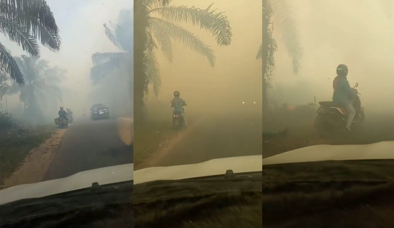 https: img.okezone.com content 2019 09 12 337 2103937 viral-pemotor-tabrak-pohon-kelapa-sawit-di-tengah-kabut-asap-skIQtTsVTG.jpg