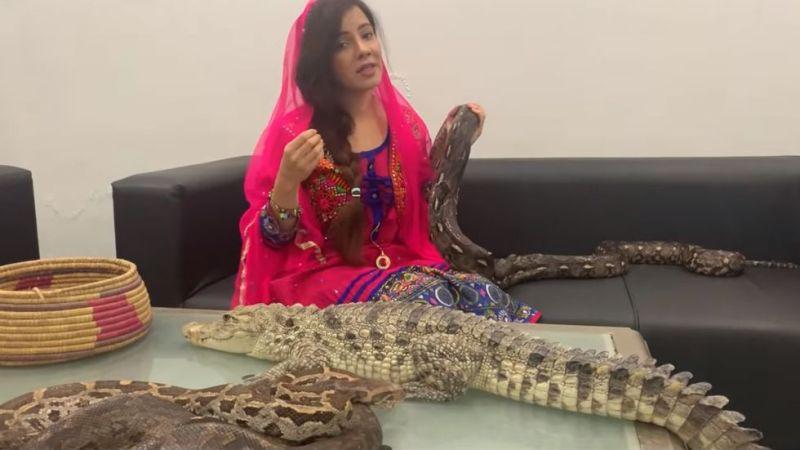 https: img.okezone.com content 2019 09 15 18 2105125 penyanyi-pakistan-hadapi-hukuman-penjara-setelah-ancam-pm-india-dengan-ular-dqaQUAF21H.jpg