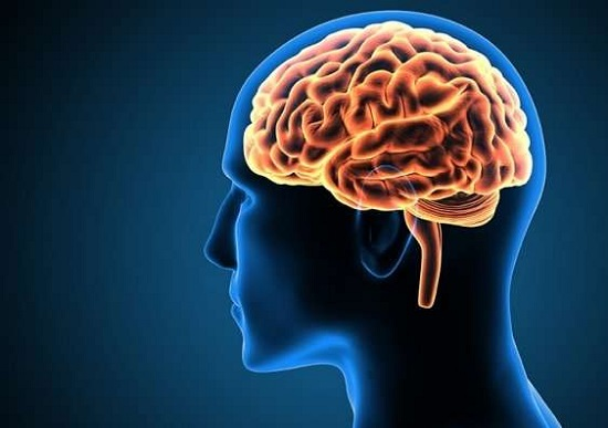 https: img.okezone.com content 2019 09 16 56 2105540 ahli-biologi-ungkap-kekuatan-pikiran-bisa-ubah-kehidupan-seseorang-pVy5XNGkWe.jpg