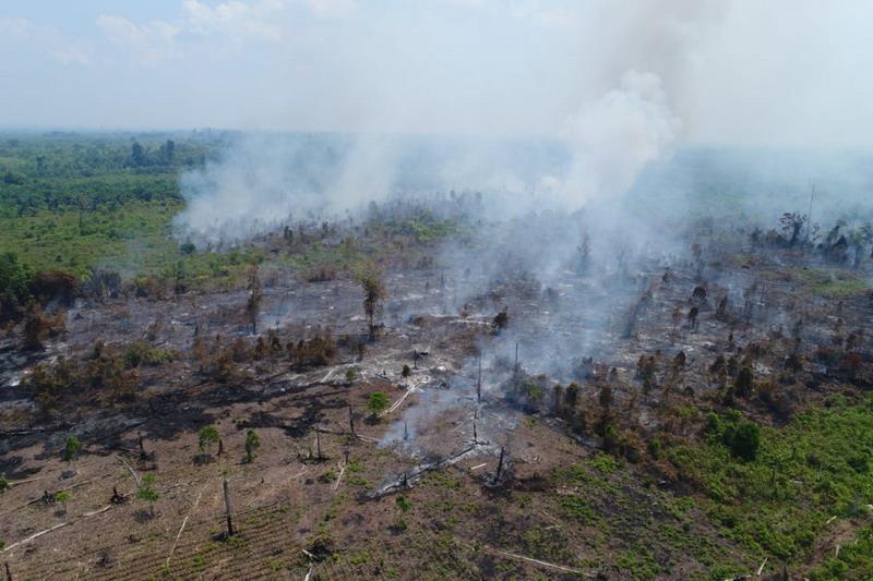 https: img.okezone.com content 2019 09 17 337 2105710 wacana-copot-kapolda-dinilai-penting-untuk-penegakkan-hukum-soal-kebakaran-hutan-NqbKR1jwiV.jpg