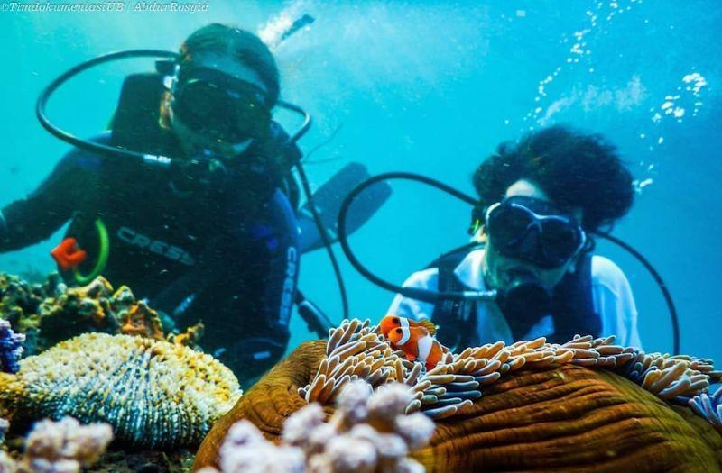 https: img.okezone.com content 2019 09 17 406 2105788 memburu-keindahan-alam-bawah-laut-di-5-pulau-sulawesi-5fHOdo2pK0.jpg