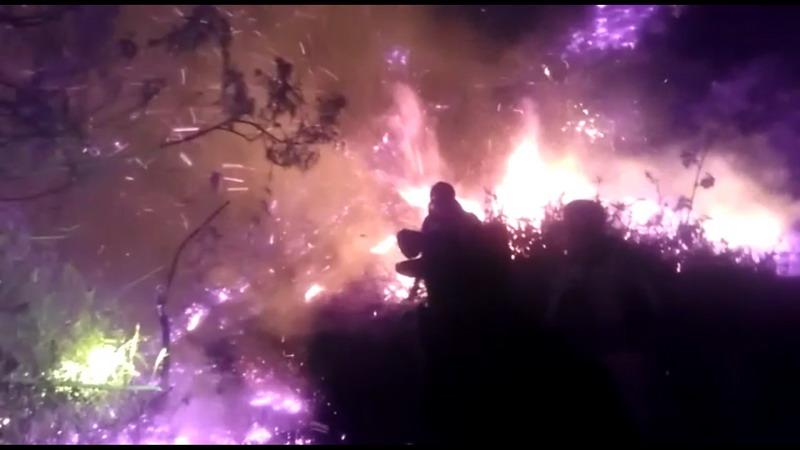 https: img.okezone.com content 2019 09 18 512 2106153 gunung-slamet-terbakar-puluhan-petugas-berjibaku-melawan-api-myNr29brD0.jpg