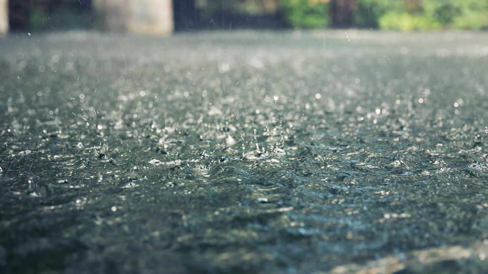 https: img.okezone.com content 2019 09 22 337 2107812 bmkg-kalimantan-tengah-berpotensi-diguyur-hujan-hari-ini-b1qmUpEpcE.jpg