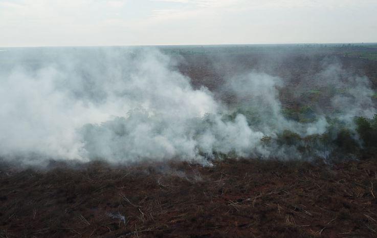 https: img.okezone.com content 2019 09 23 337 2108013 dpr-pembakar-hutan-selevel-dengan-teroris-TiYRIjWK0B.JPG