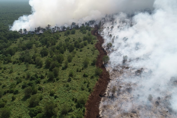 https: img.okezone.com content 2019 09 23 337 2108106 675-titik-api-tersebar-di-sumsel-udara-palembang-paling-berbahaya-di-indonesia-uX5BOtQZA1.jpg