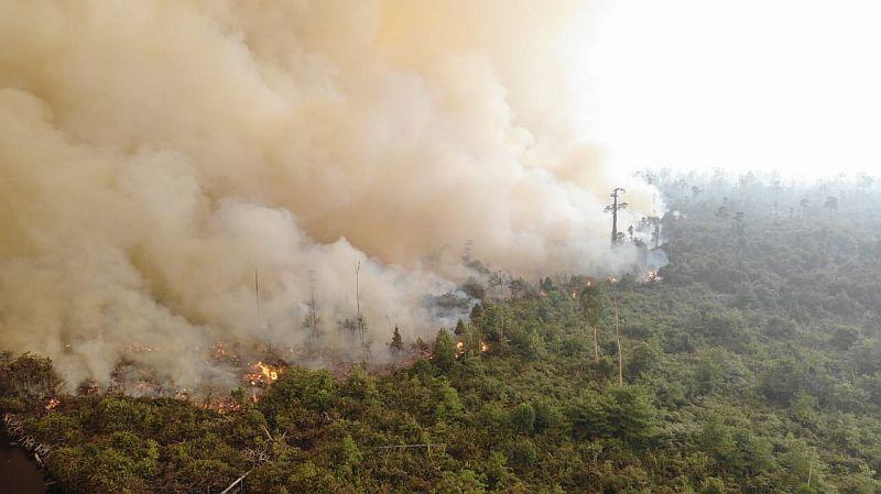 https: img.okezone.com content 2019 09 23 337 2108354 pkb-daripada-saling-menyalahkan-ayo-bersama-atasi-kebakaran-hutan-P4Y0S5GfgZ.jpg