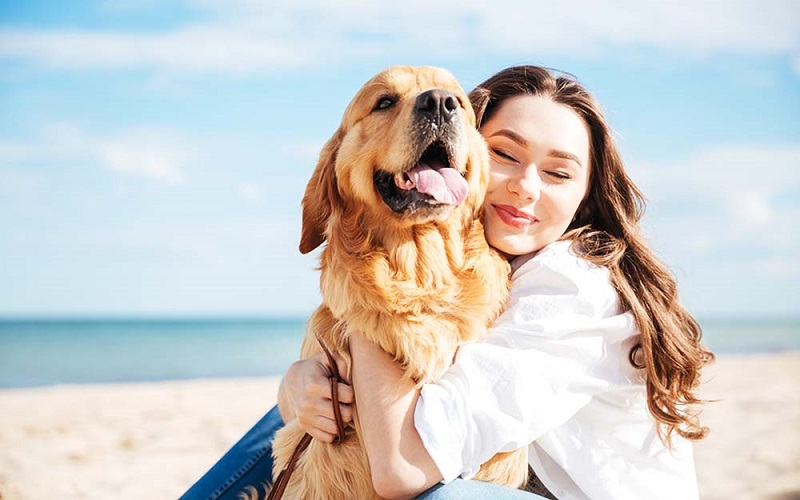 https: img.okezone.com content 2019 09 24 196 2108465 wanita-ini-rela-tinggalkan-pekerjaan-untuk-cari-anjingnya-yang-hilang-8bGH0gXuno.jpg