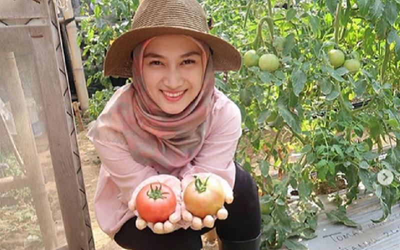 https: img.okezone.com content 2019 09 24 617 2108670 hari-tani-nasional-intip-gaya-hijab-melody-eks-jkt48-panen-sayur-71UAnqNVTA.jpg
