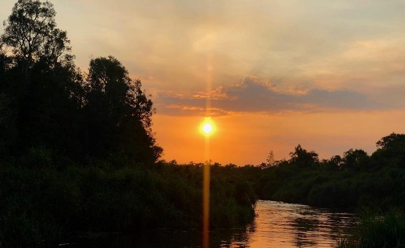 https: img.okezone.com content 2019 09 29 406 2110730 indahnya-sunset-di-sungai-sekonyer-akhiri-perjalanan-jelajah-orangutan-di-kalimantan-BgItVGLkOk.jpg