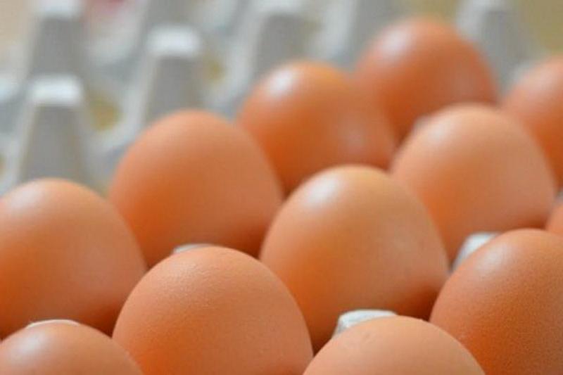 https: img.okezone.com content 2019 09 29 481 2110671 cara-mudah-tingkatkan-kandungan-omega-3-pada-telur-3BYvOVnBB8.jpg