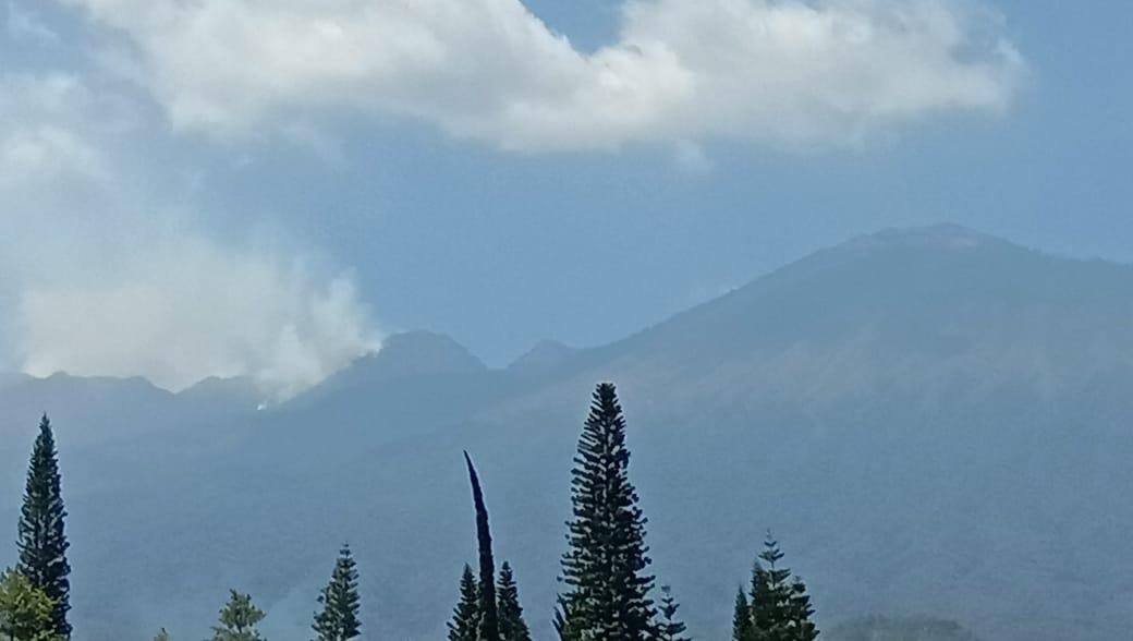 https: img.okezone.com content 2019 09 29 519 2110741 hutan-di-gunung-arjuno-kembali-terbakar-4pYpWlDuex.jpg