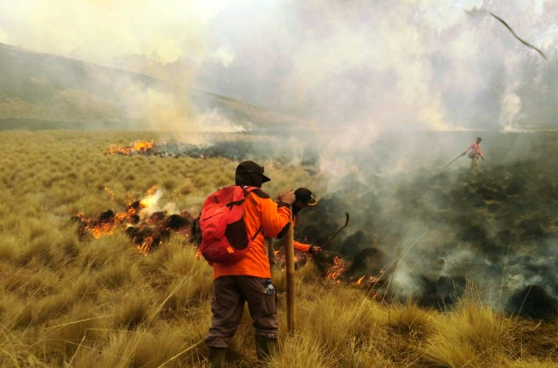 https: img.okezone.com content 2019 10 01 519 2111550 api-di-gunung-semeru-belum-bisa-dipadamkan-97-hektare-lahan-hangus-Z4VwweohSV.jpg