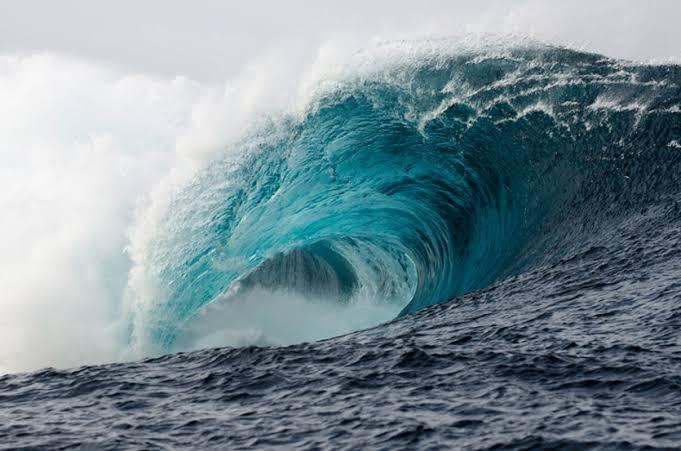 https: img.okezone.com content 2019 10 02 481 2111858 ilmuwan-khawatir-wabah-penyakit-jamur-akibat-tsunami-terjadi-di-indonesia-s1If1k4tyz.jpg
