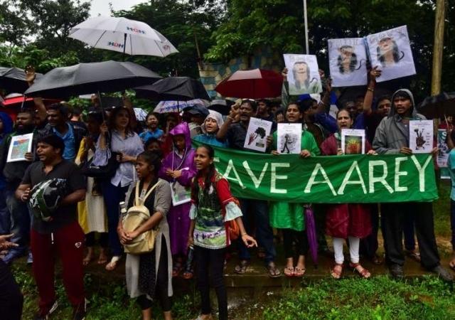 https: img.okezone.com content 2019 10 07 18 2113879 warga-mumbai-melawan-penebangan-hutan-kota-rDZsZh0XpI.jpg