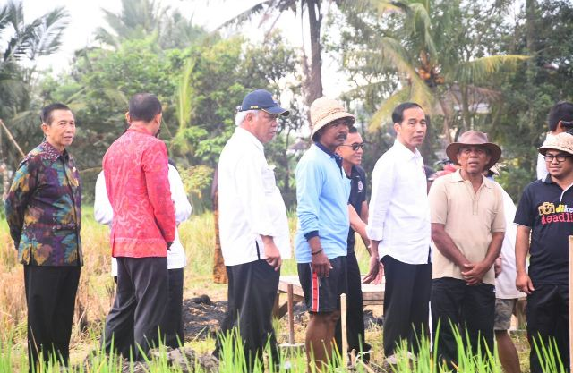 https: img.okezone.com content 2019 10 10 337 2115155 jokowi-diminta-lanjutkan-reforma-agraria-untuk-pulihkan-harkat-martabat-petani-smsmnfYz1x.jpg