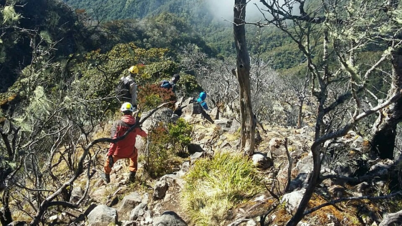 https: img.okezone.com content 2019 10 10 609 2115141 delapan-pendaki-madipala-unm-tersesat-di-gunung-lompobattang-By5AghKSTd.jpg