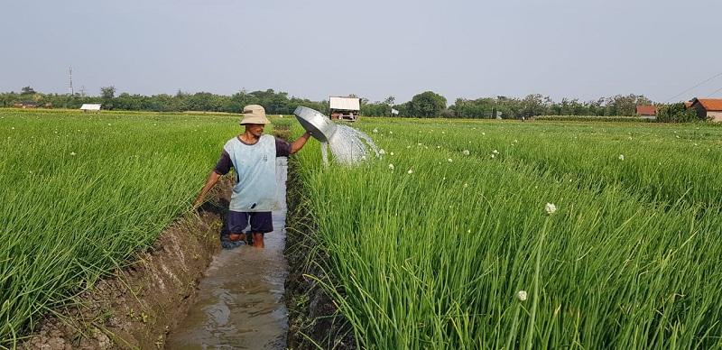 https: img.okezone.com content 2019 10 11 320 2115744 mentan-ke-milenial-pertanian-kita-sudah-modern-dan-canggih-YIK8Aoxbn2.jpg