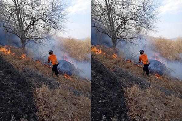 https: img.okezone.com content 2019 10 12 337 2116044 hutan-gunung-gandul-terbakar-UzuQnku7K0.jpeg