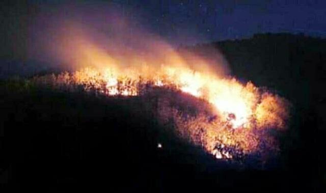 https: img.okezone.com content 2019 10 12 519 2116012 ini-penyebab-kebakaran-di-gunung-arjuno-terus-meluas-kLIW2Krm3T.jpg