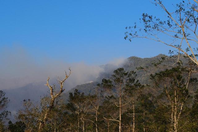 https: img.okezone.com content 2019 10 23 609 2120752 hutan-gunung-lompobattang-dan-bawakaraeng-sulsel-terbakar-APWEsHGvM9.jpg