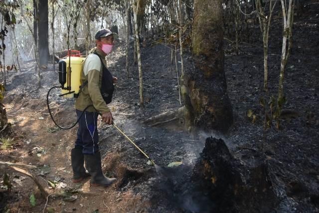 https: img.okezone.com content 2019 10 23 609 2120915 hutan-yang-terbakar-di-gunung-bawakaraeng-10-hektare-Up6ZyT2qqu.jpg