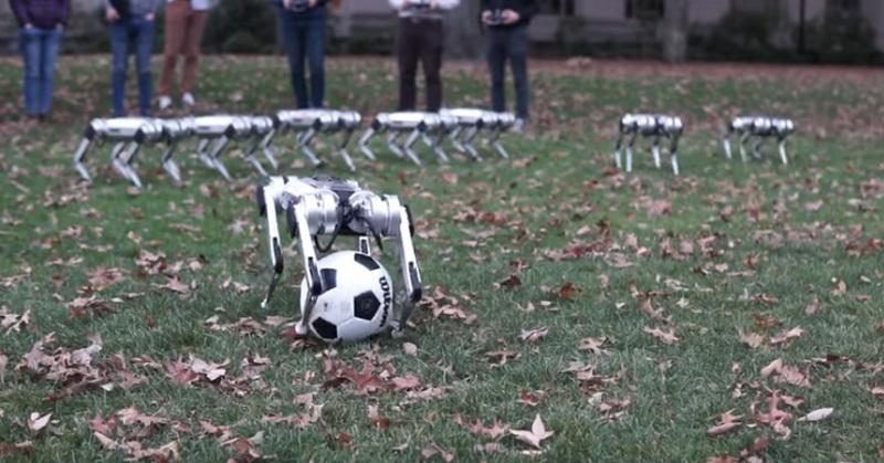 https: img.okezone.com content 2019 11 09 56 2127812 canggih-robot-menyerupai-anjing-ini-bisa-bermain-bola-X3jfhROa4o.jpg