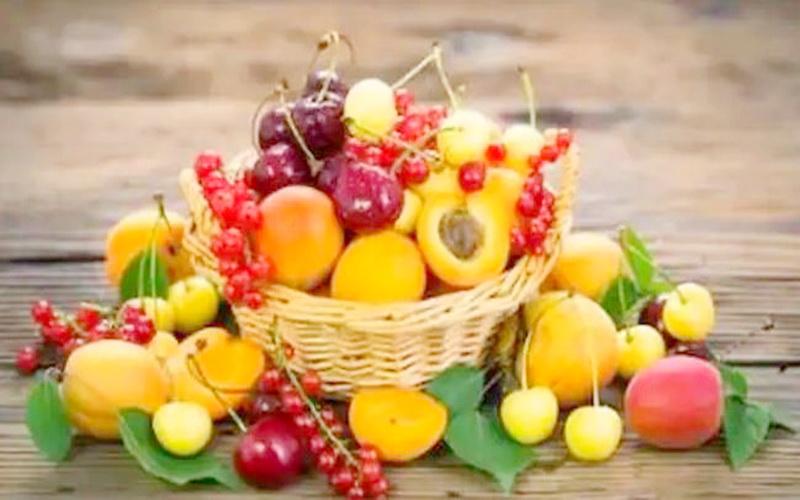 https: img.okezone.com content 2019 11 20 481 2132142 daftar-buah-terlarang-dan-aman-untuk-penderita-diabetes-3czcHHMfpP.JPG