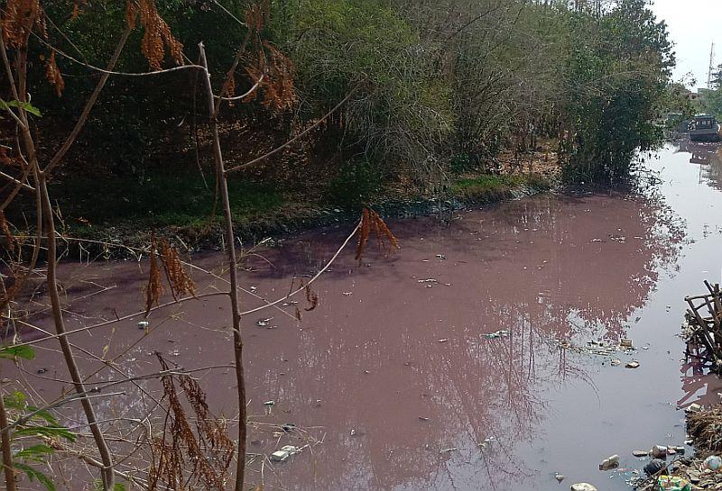 https: img.okezone.com content 2019 11 29 525 2136185 sungai-ciberes-berwarna-merah-muda-warga-mulai-resah-sCcQlHh3dm.jpg