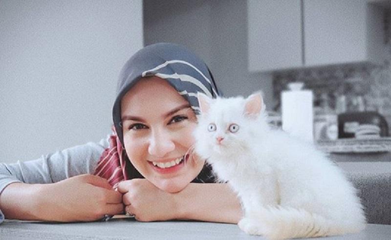 Ikuti Jejak Nabi Irish Bella Pelihara Kucing Okezone Muslim