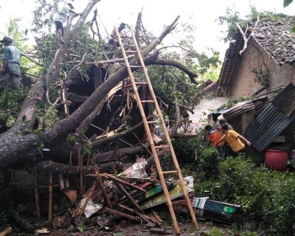 https: img.okezone.com content 2019 12 08 510 2139454 hujan-angin-di-yogyakarta-puluhan-rumah-rusak-dan-ratusan-pohon-tumbang-pO4wHm5AsW.jpg