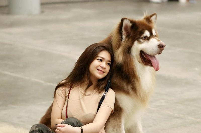 https: img.okezone.com content 2019 12 11 194 2140773 5-dog-lover-cantik-indonesia-gemas-banget-nECny4K0GZ.jpg