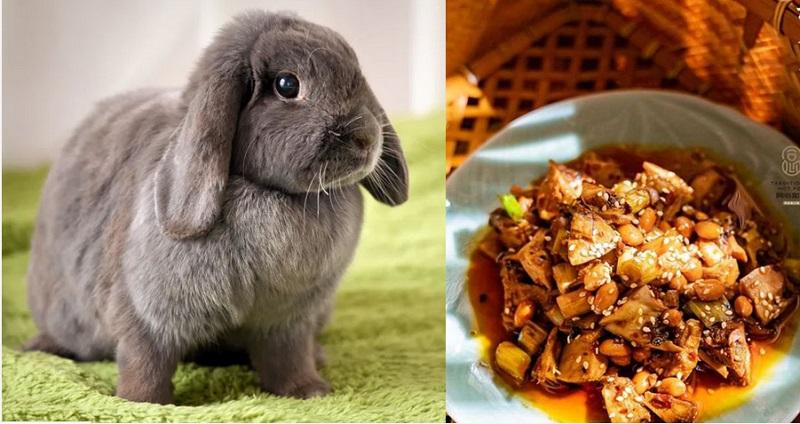 https: img.okezone.com content 2019 12 11 298 2140475 jual-makanan-dari-daging-kelinci-restoran-ini-dikecam-5-000-aktivis-pencinta-hewan-NU8DBv78nw.jpg