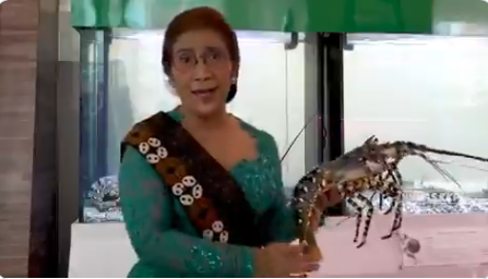 https: img.okezone.com content 2019 12 15 320 2142100 susi-beberkan-tarif-penyelundupan-benih-lobster-ke-jakarta-rp115-juta-koper-C0hO27WLFY.png
