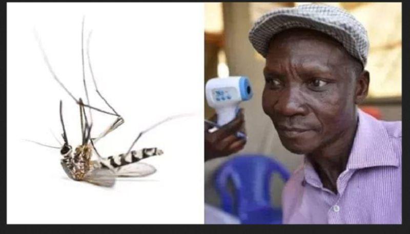 https: img.okezone.com content 2019 12 15 612 2142149 hoax-pria-uganda-punya-kentut-mematikan-nyamuk-semua-orang-langsung-tertipu-SoIuVGbdaD.jpg