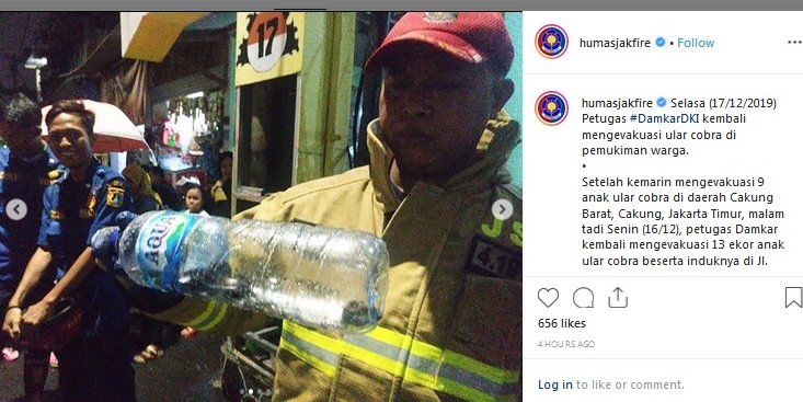 https: img.okezone.com content 2019 12 17 338 2142905 damkar-evakuasi-13-ular-kobra-di-pasar-minggu-jaksel-FEiqaNj9YT.jpg
