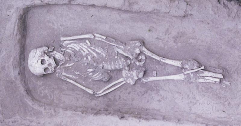 https: img.okezone.com content 2019 12 18 56 2143474 arkeolog-temukan-kerangka-manusia-kerdil-berusia-5-000-tahun-vlwtOEdb7C.jpg