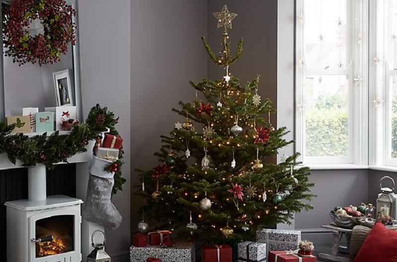 https: img.okezone.com content 2019 12 27 196 2146569 5-tips-jaga-pohon-natal-tetap-hidup-dan-segar-untuk-perayaan-tahun-baru-TCqbmfkro2.jfif