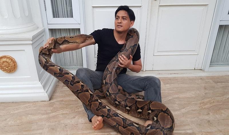 https: img.okezone.com content 2020 01 02 33 2148543 lucky-hakim-imbau-warga-waspada-kemunculan-ular-saat-banjir-RGeZGj0Nwt.jpeg